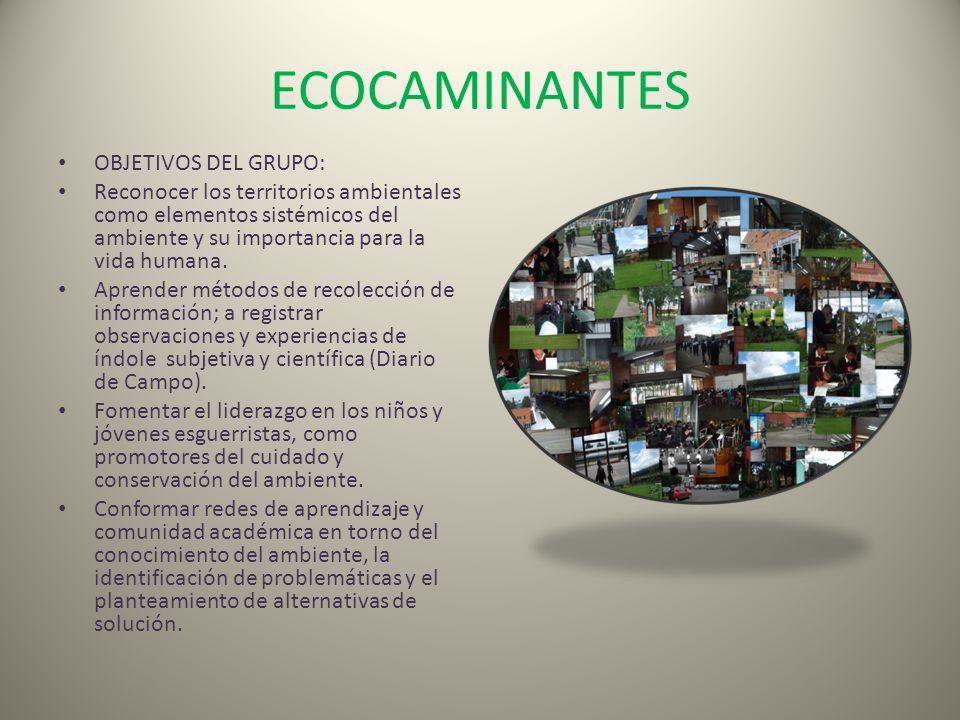 ECOCAMINANTES OBJETIVOS DEL GRUPO: Reconocer los territorios ambientales como elementos sistémicos del ambiente y su importancia para la vida humana.