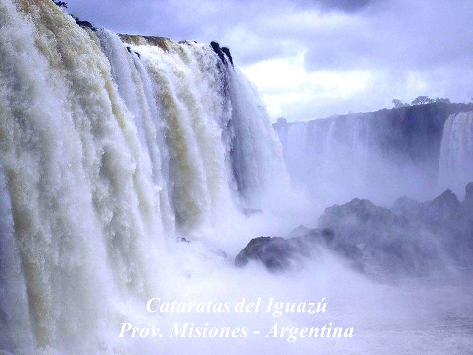 Vista de verano Antartida Argentina