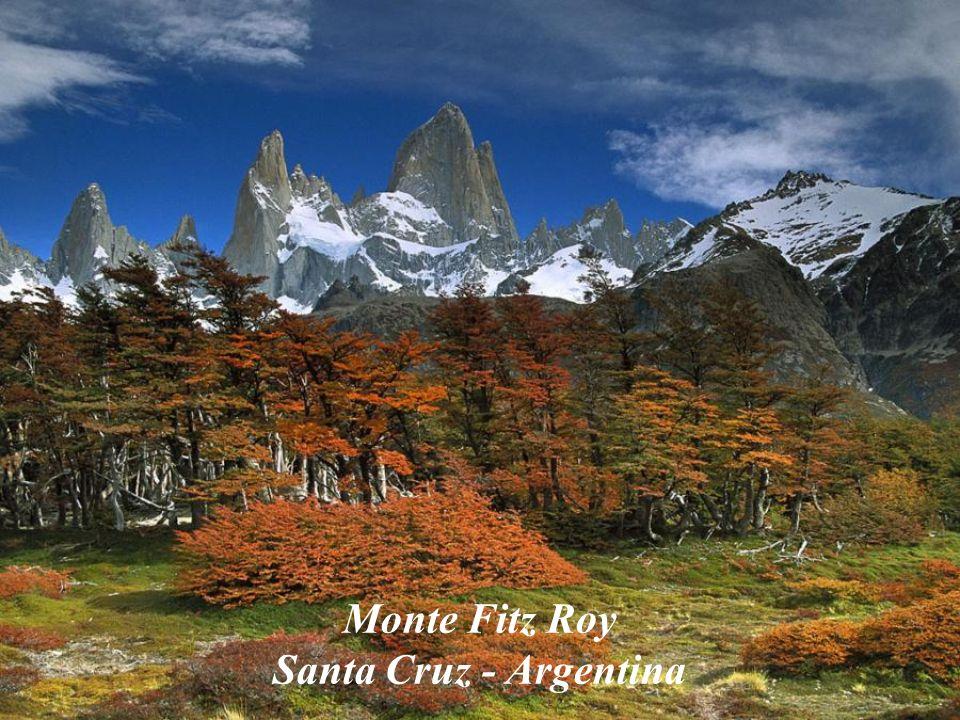 Glaciar Perito Moreno Santa Cruz - Argentina