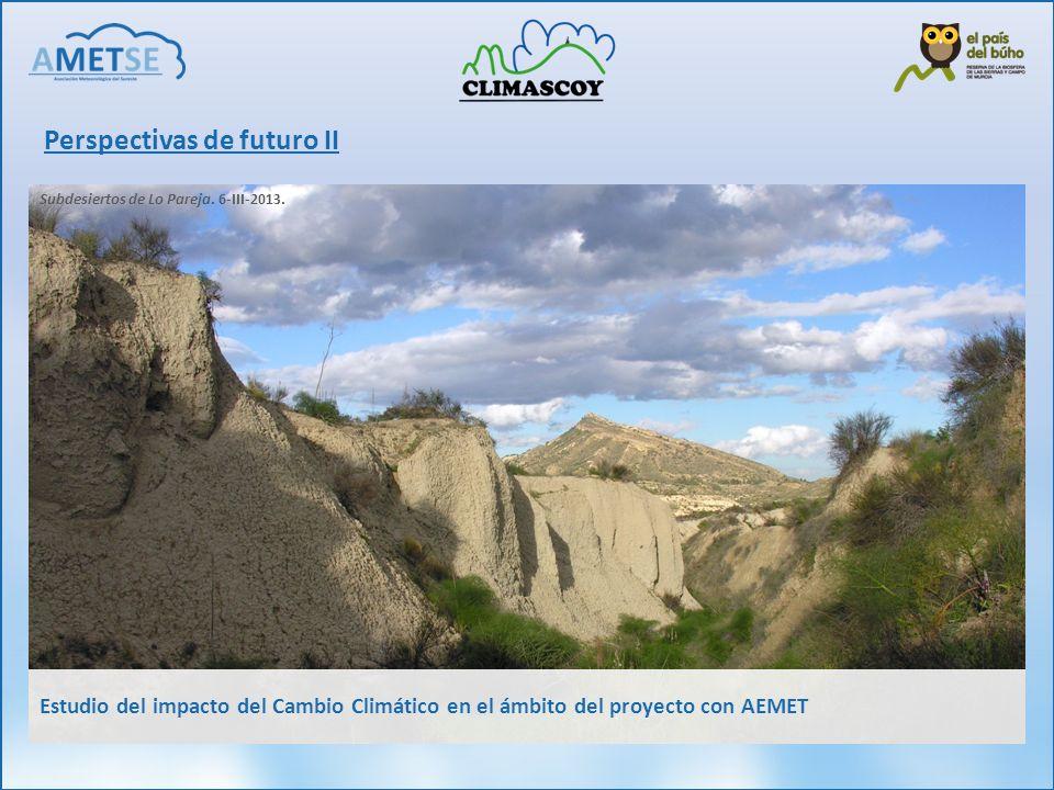 Perspectivas de futuro II Subdesiertos de Lo Pareja. 6-III-2013. Estudio del impacto del Cambio Climático en el ámbito del proyecto con AEMET