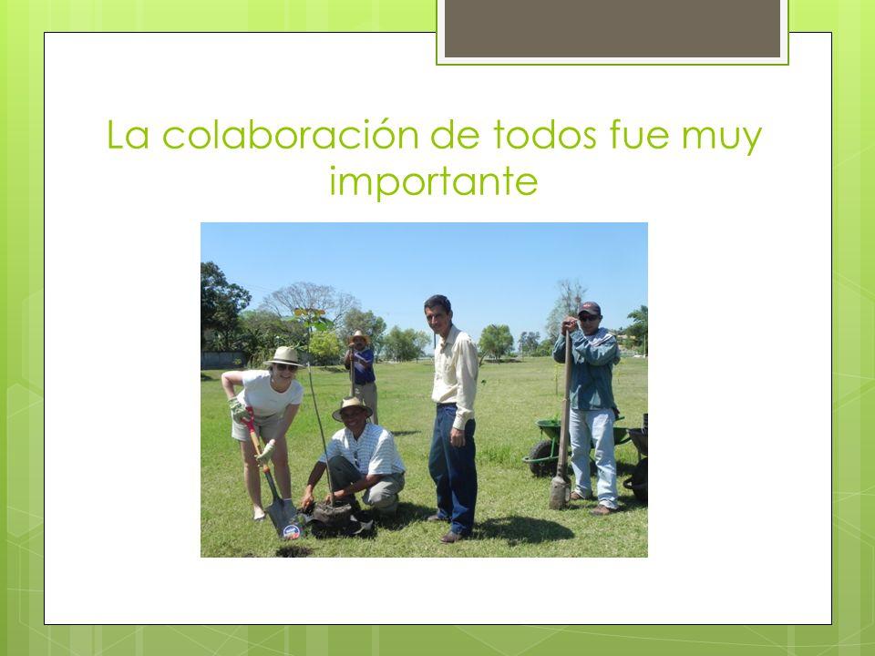 La colaboración de todos fue muy importante