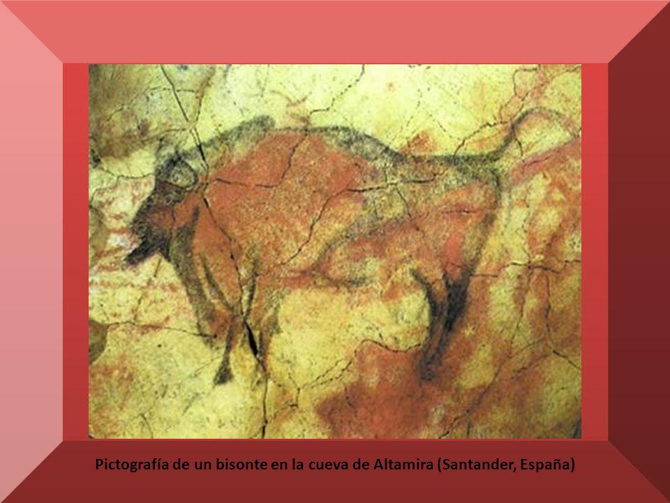 Pictografía de un bisonte en la cueva de Altamira (Santander, España)