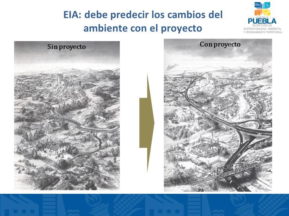 EIA: debe predecir los cambios del ambiente con el proyecto Sin proyecto Con proyecto