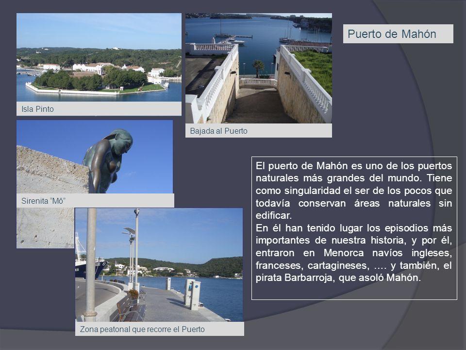 Puerto de Mahón El puerto de Mahón es uno de los puertos naturales más grandes del mundo. Tiene como singularidad el ser de los pocos que todavía cons