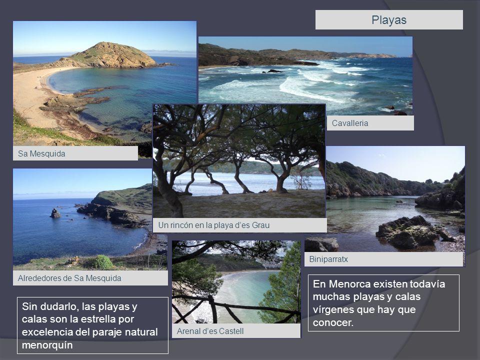 Playas Sin dudarlo, las playas y calas son la estrella por excelencia del paraje natural menorquín En Menorca existen todavía muchas playas y calas vírgenes que hay que conocer.