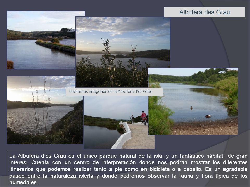 Albufera des Grau La Albufera des Grau es el único parque natural de la isla, y un fantástico hábitat de gran interés. Cuenta con un centro de interpr
