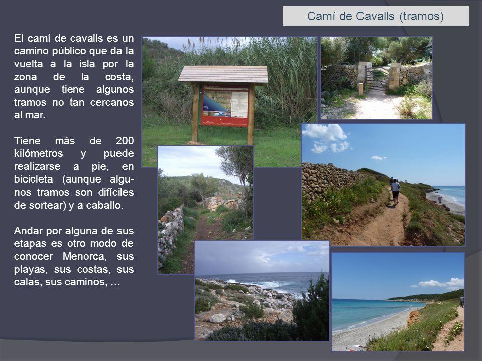 Camí de Cavalls (tramos) El camí de cavalls es un camino público que da la vuelta a la isla por la zona de la costa, aunque tiene algunos tramos no ta