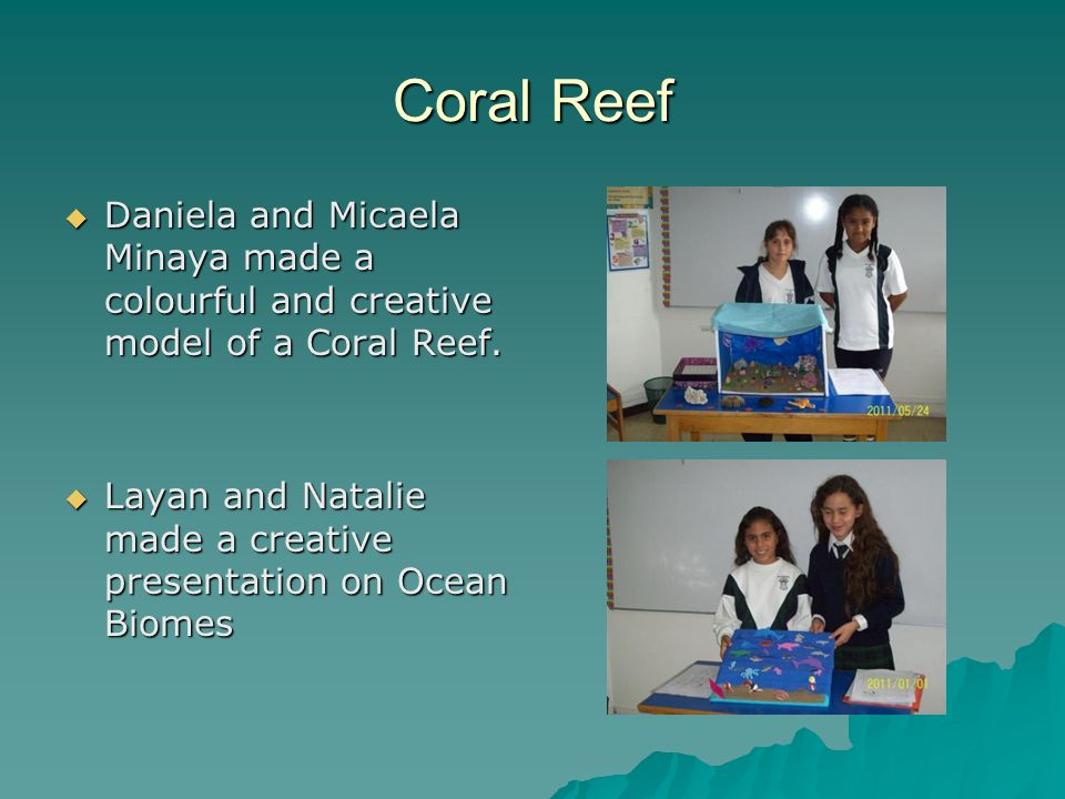 Coral Reef Daniela and Micaela Minaya made a colourful and creative model of a Coral Reef.