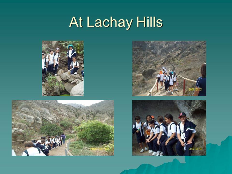 At Lachay Hills