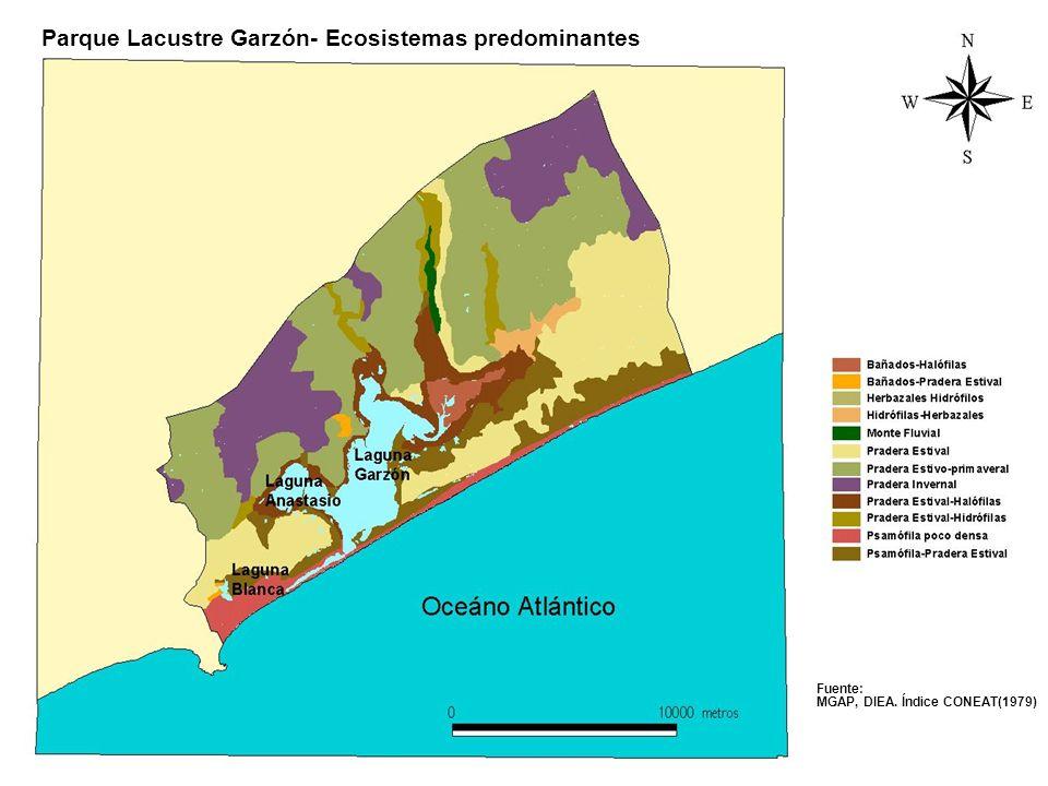Fuente: MGAP, DIEA. Índice CONEAT(1979) Parque Lacustre Garzón- Ecosistemas predominantes