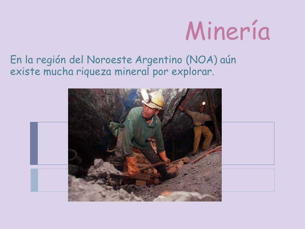Minería En la región del Noroeste Argentino (NOA) aún existe mucha riqueza mineral por explorar.
