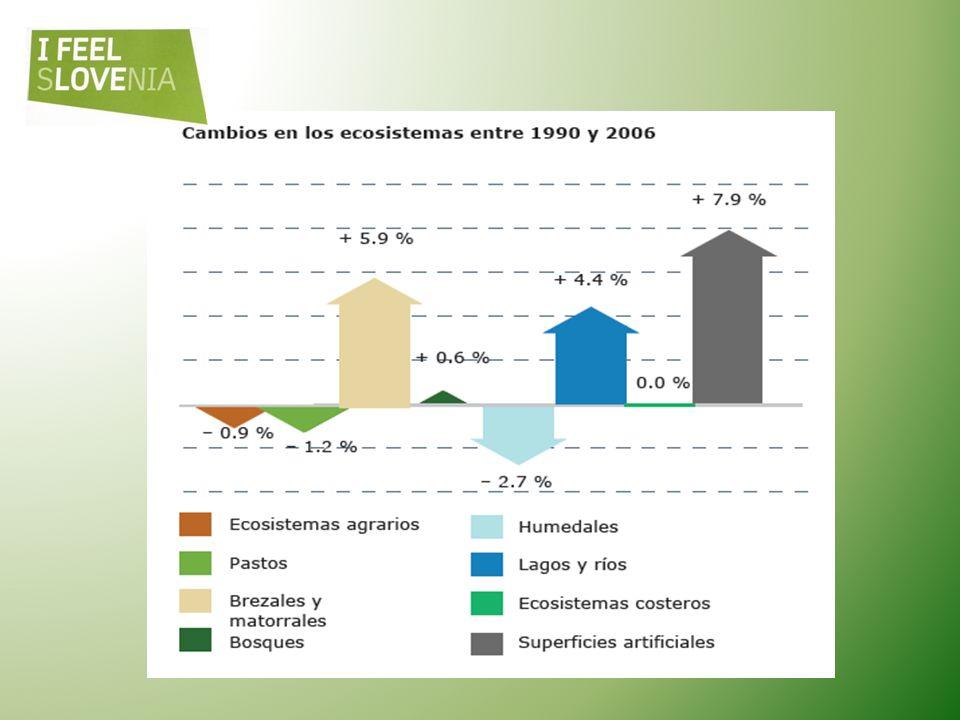 Escenario de referencia de la biodiversidad europea ¿En qué situación se encuentra Europa en 2010? Escenario de referencia de la biodiversidad europea
