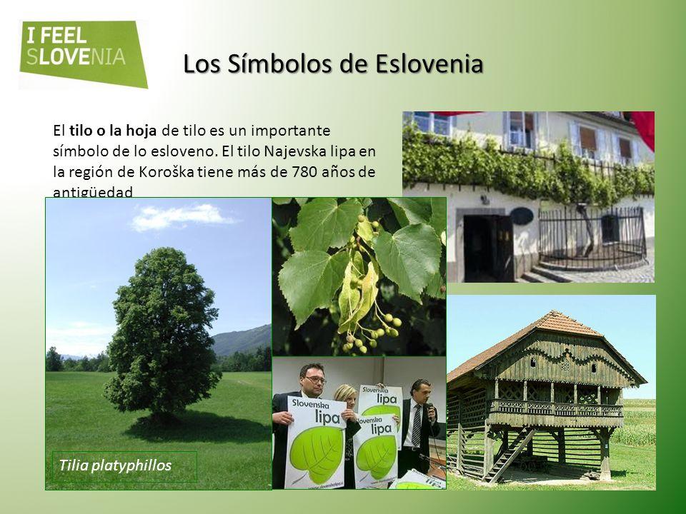 Castillo de Ljubljana, siglo XII Castillo de Celje, siglo XIV En Eslovenia existen cien castillos. Los romanos fueron los primeros en descubrir las bo