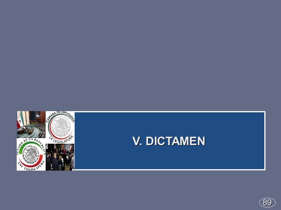 89 V. DICTAMEN