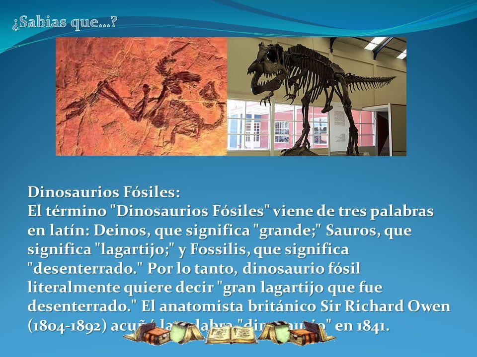 Dinosaurios Fósiles: El término
