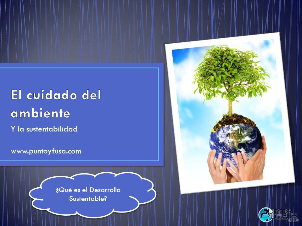Y la sustentabilidad www.puntoyfusa.com ¿Qué es el Desarrollo Sustentable?