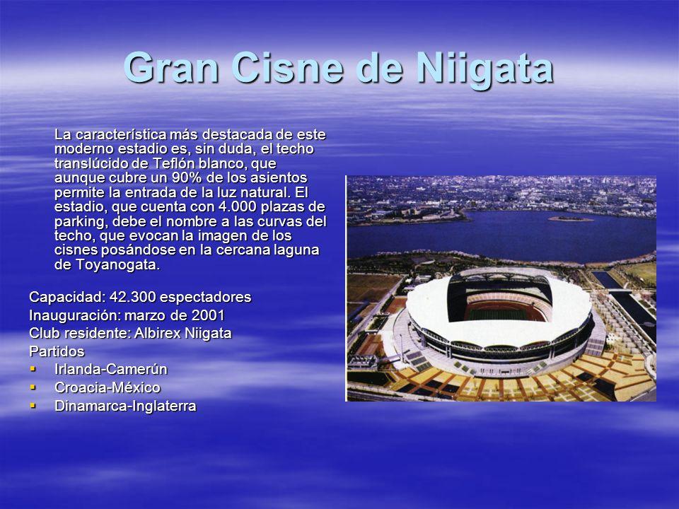 Gran Cisne de Niigata La característica más destacada de este moderno estadio es, sin duda, el techo translúcido de Teflón blanco, que aunque cubre un