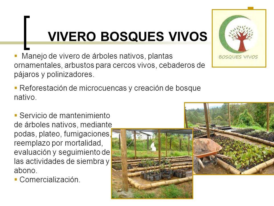 VIVERO BOSQUES VIVOS Manejo de vivero de árboles nativos, plantas ornamentales, arbustos para cercos vivos, cebaderos de pájaros y polinizadores. Refo