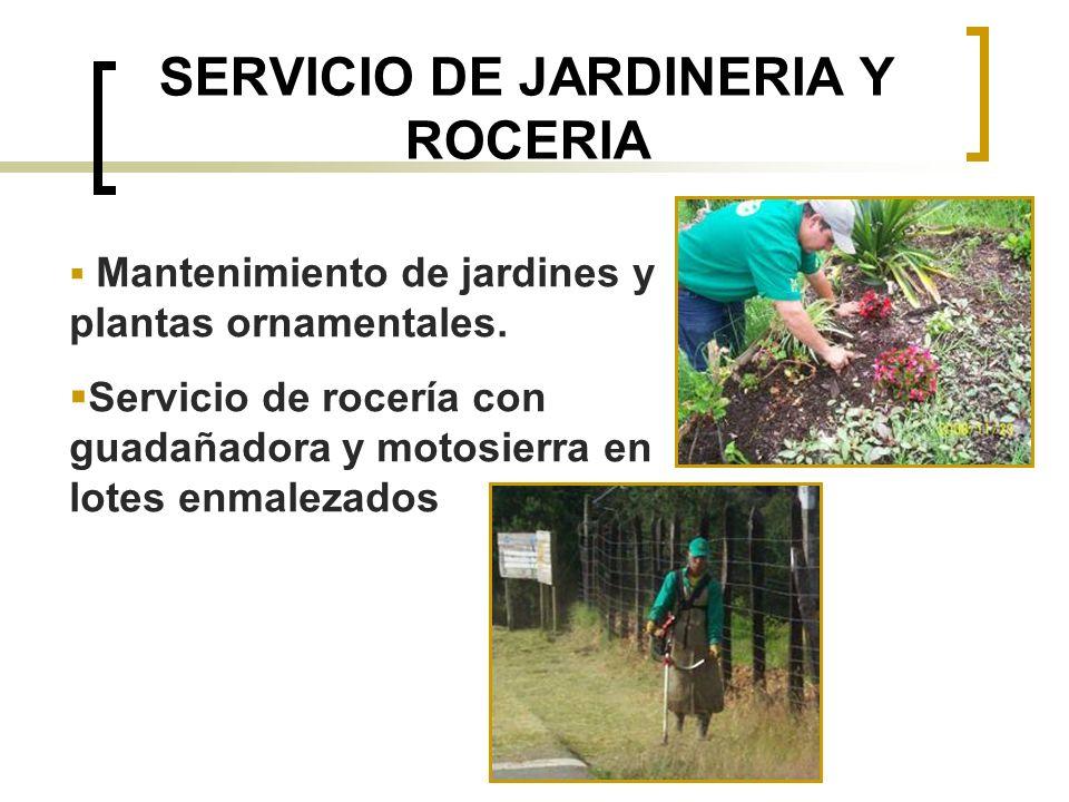 SERVICIO DE JARDINERIA Y ROCERIA Mantenimiento de jardines y plantas ornamentales. Servicio de rocería con guadañadora y motosierra en lotes enmalezad