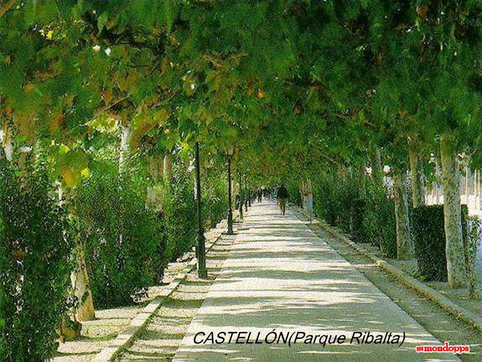 ASTURIAS (Santuario de Ntra Sra de Covadonga)