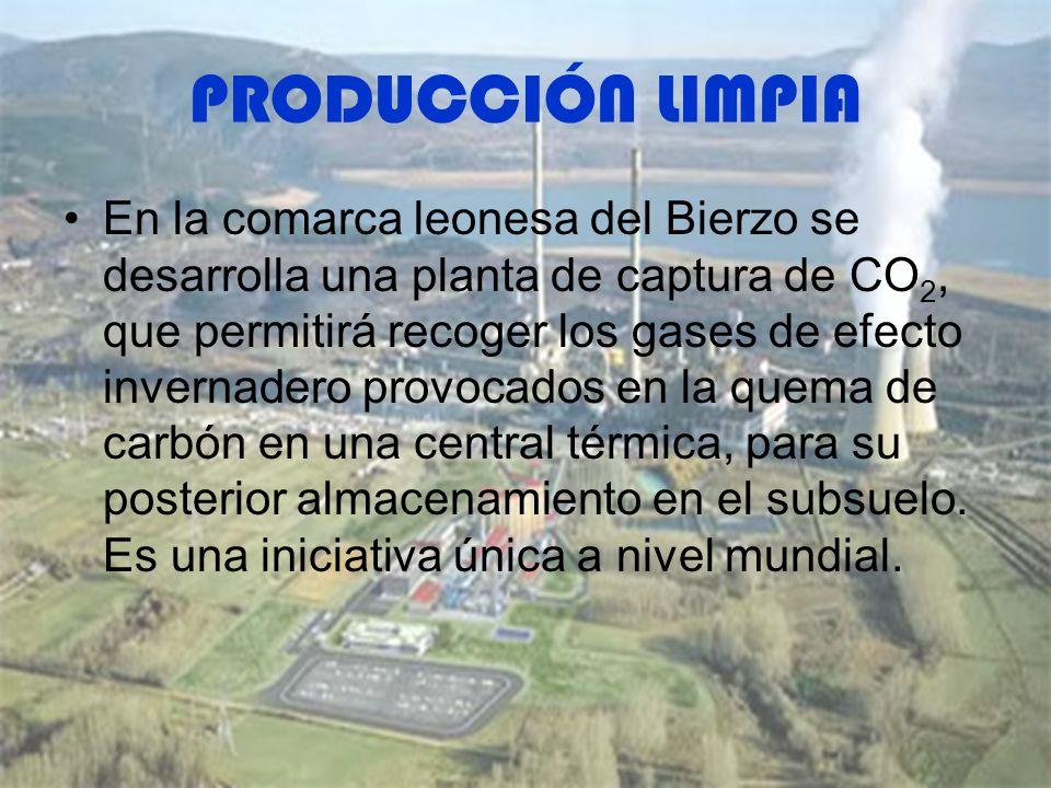 PRODUCCIÓN LIMPIA En la comarca leonesa del Bierzo se desarrolla una planta de captura de CO 2, que permitirá recoger los gases de efecto invernadero provocados en la quema de carbón en una central térmica, para su posterior almacenamiento en el subsuelo.