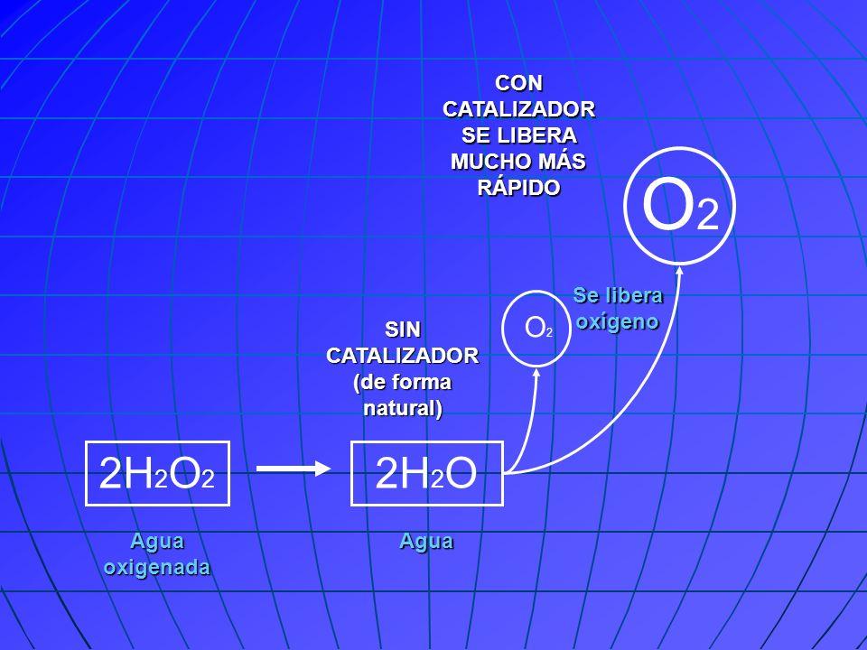 2H 2 O 2 2H 2 O O2O2 O2O2 SIN CATALIZADOR (de forma natural) CON CATALIZADOR SE LIBERA MUCHO MÁS RÁPIDO Agua oxigenada Agua Se libera oxígeno
