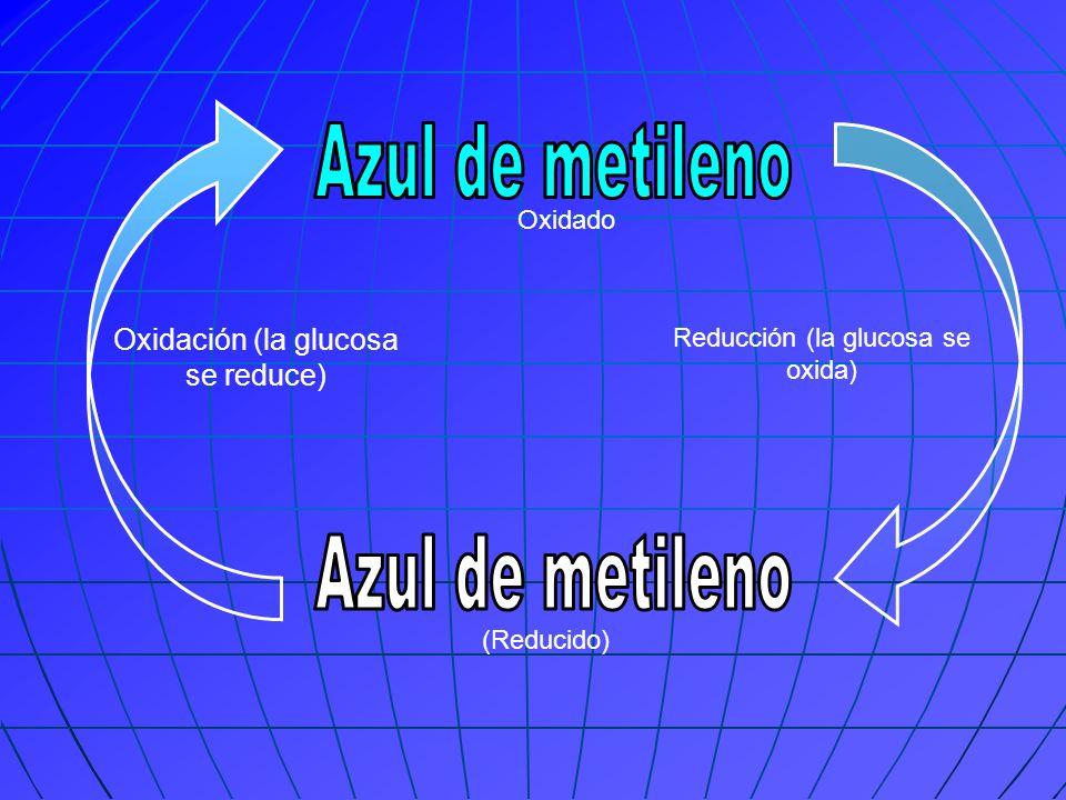 (Reducido) Oxidado Oxidación (la glucosa se reduce) Reducción (la glucosa se oxida)