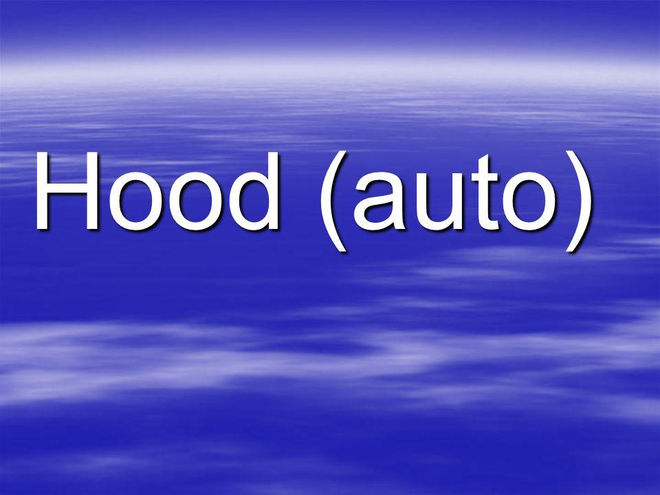 Hood (auto)