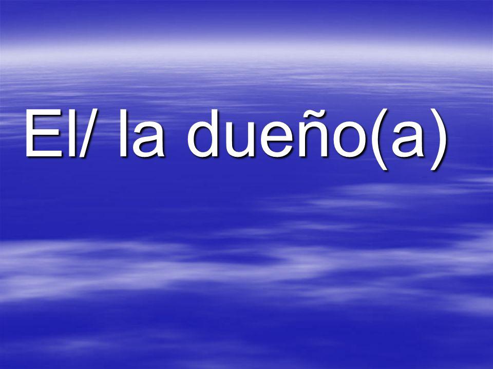 El/ la dueño(a)