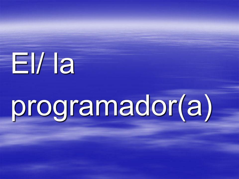 El/ la programador(a)