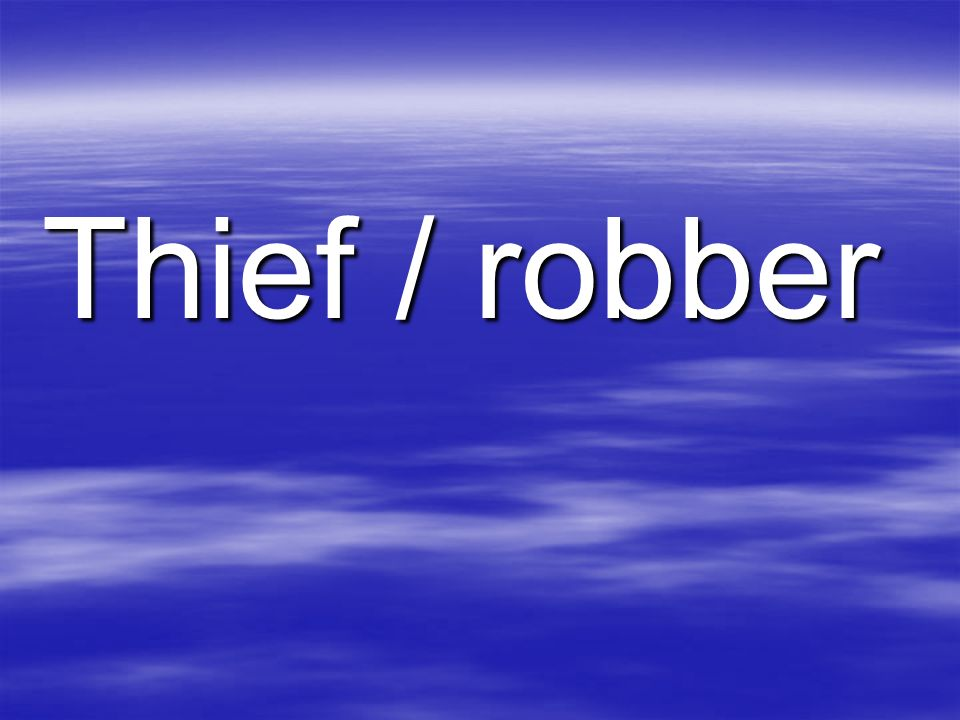 Thief / robber