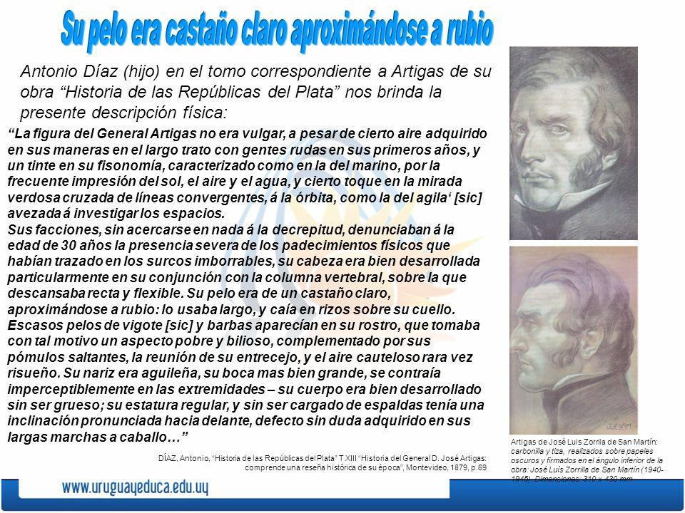 Antonio Díaz (hijo) en el tomo correspondiente a Artigas de su obra Historia de las Repúblicas del Plata nos brinda la presente descripción física: La