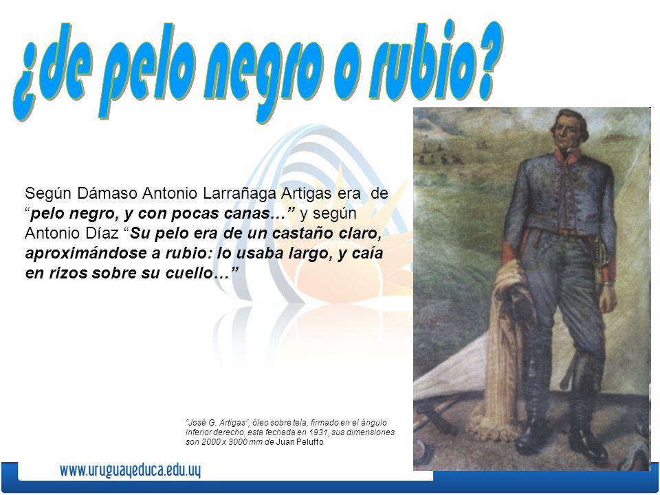 Según Dámaso Antonio Larrañaga Artigas era depelo negro, y con pocas canas… y según Antonio Díaz Su pelo era de un castaño claro, aproximándose a rubi