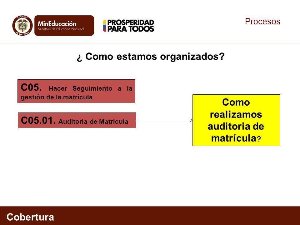 Procesos Cobertura C05.01. Auditoria de Matricula C05. Hacer Seguimiento a la gestión de la matrícula ¿ Como estamos organizados? Como realizamos audi