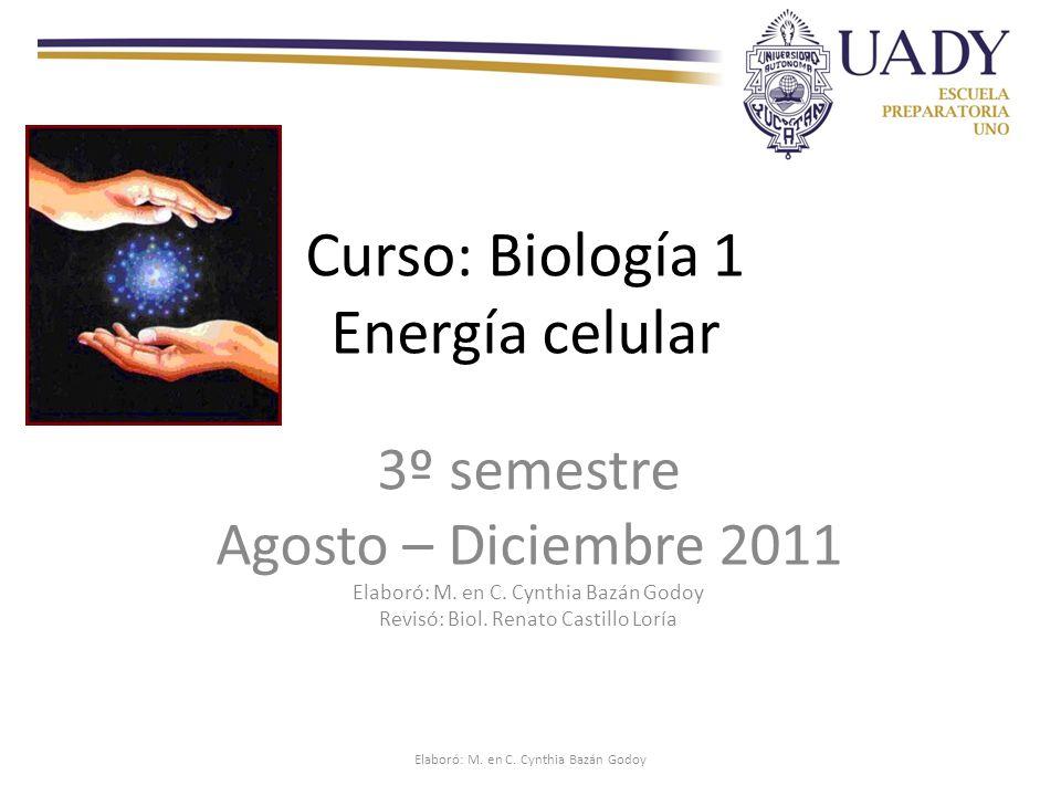 Curso: Biología 1 Energía celular 3º semestre Agosto – Diciembre 2011 Elaboró: M.