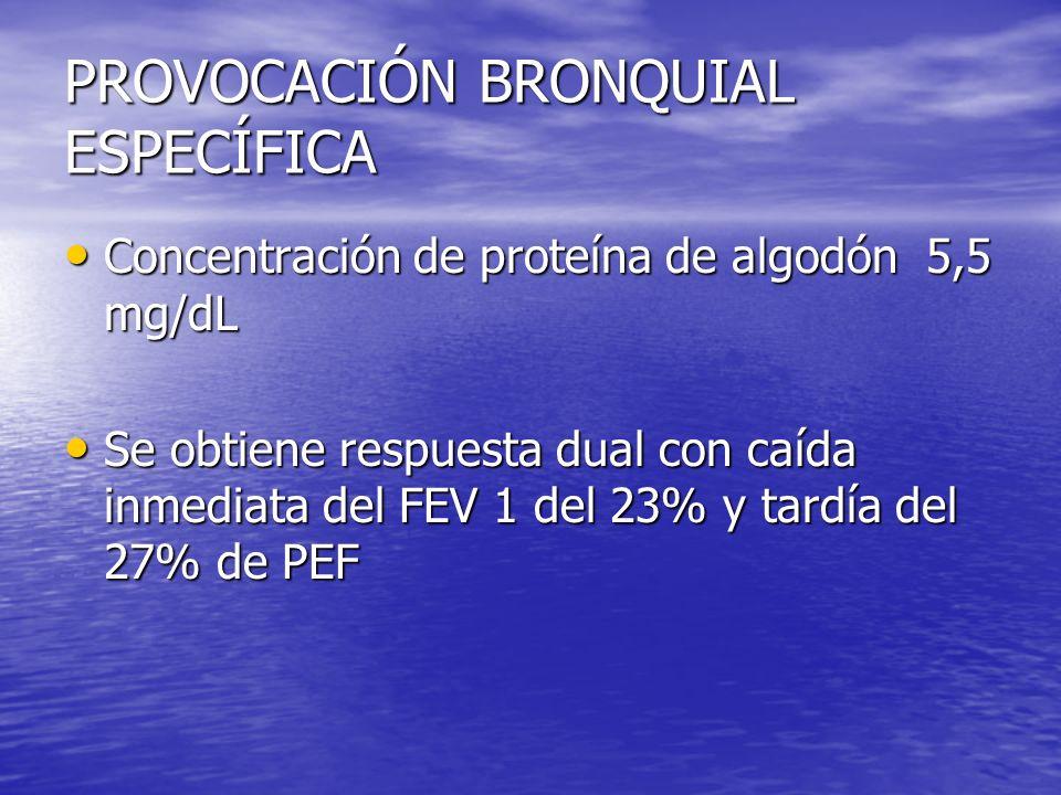 PROVOCACIÓN BRONQUIAL ESPECÍFICA Concentración de proteína de algodón 5,5 mg/dL Concentración de proteína de algodón 5,5 mg/dL Se obtiene respuesta dual con caída inmediata del FEV 1 del 23% y tardía del 27% de PEF Se obtiene respuesta dual con caída inmediata del FEV 1 del 23% y tardía del 27% de PEF