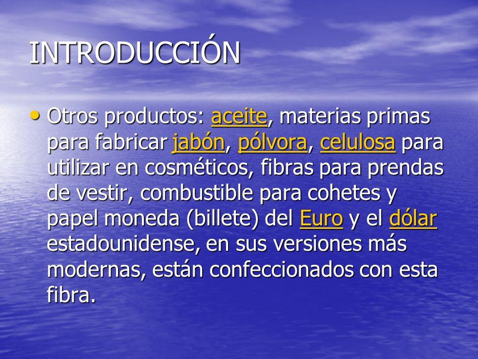 INTRODUCCIÓN Otros productos: aceite, materias primas para fabricar jabón, pólvora, celulosa para utilizar en cosméticos, fibras para prendas de vesti