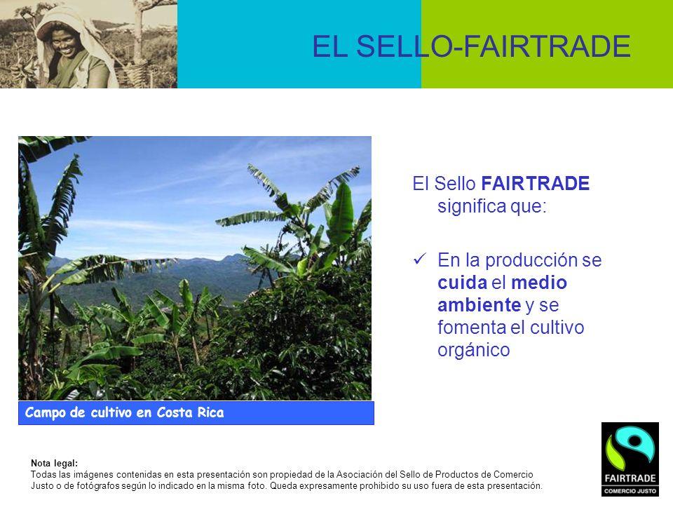 El Sello FAIRTRADE significa que: En la producción se cuida el medio ambiente y se fomenta el cultivo orgánico EL SELLO-FAIRTRADE Campo de cultivo en
