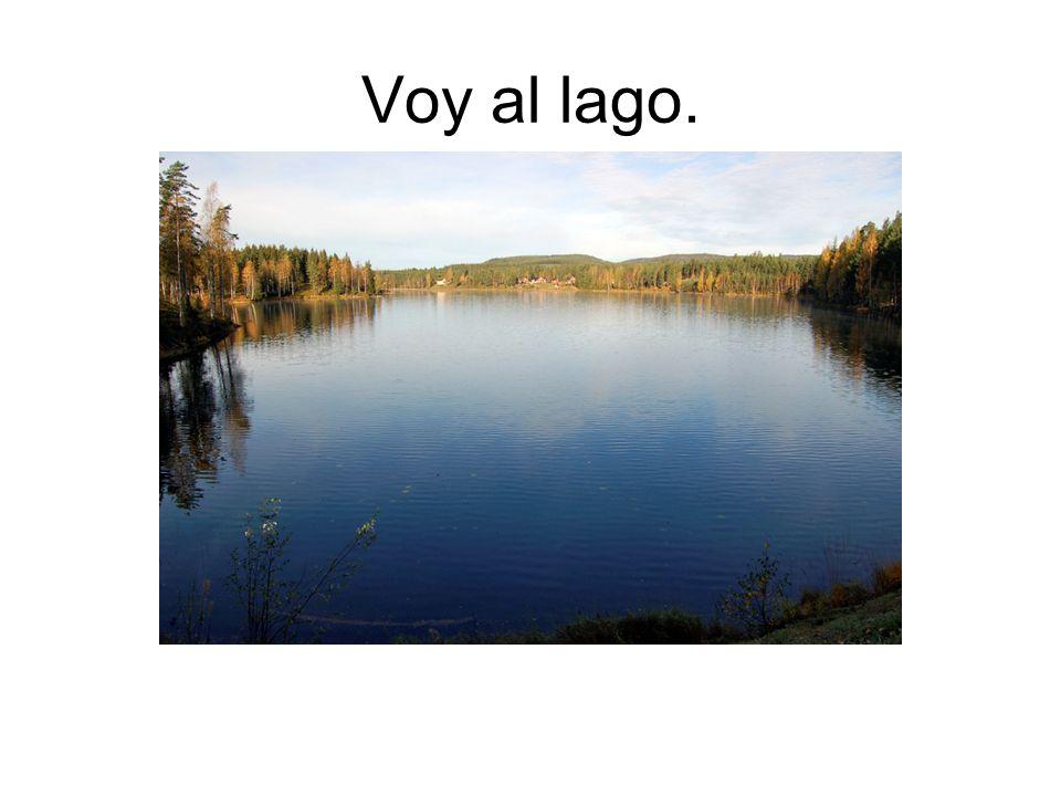 Voy al lago.