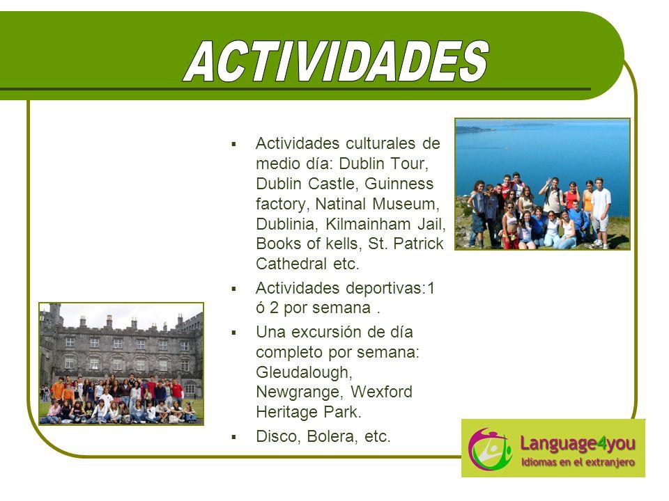 Actividades culturales de medio día: Dublin Tour, Dublin Castle, Guinness factory, Natinal Museum, Dublinia, Kilmainham Jail, Books of kells, St.