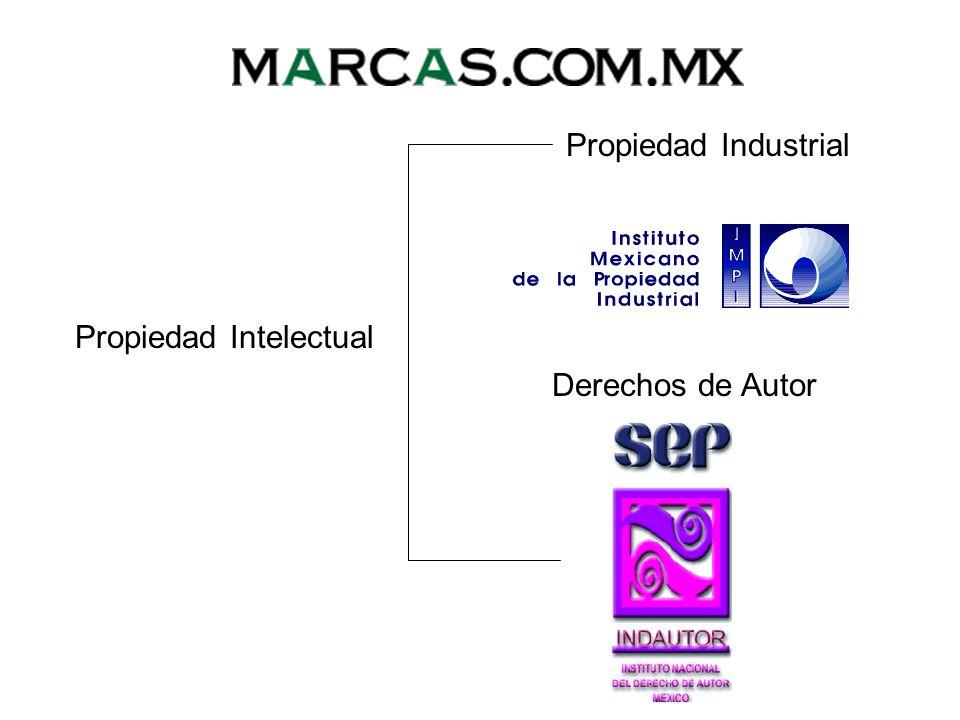 NOMBRES COMERCIALES El Nombre Comercial, es una variante de las marcas que lleva un proceso diferente al del registro.