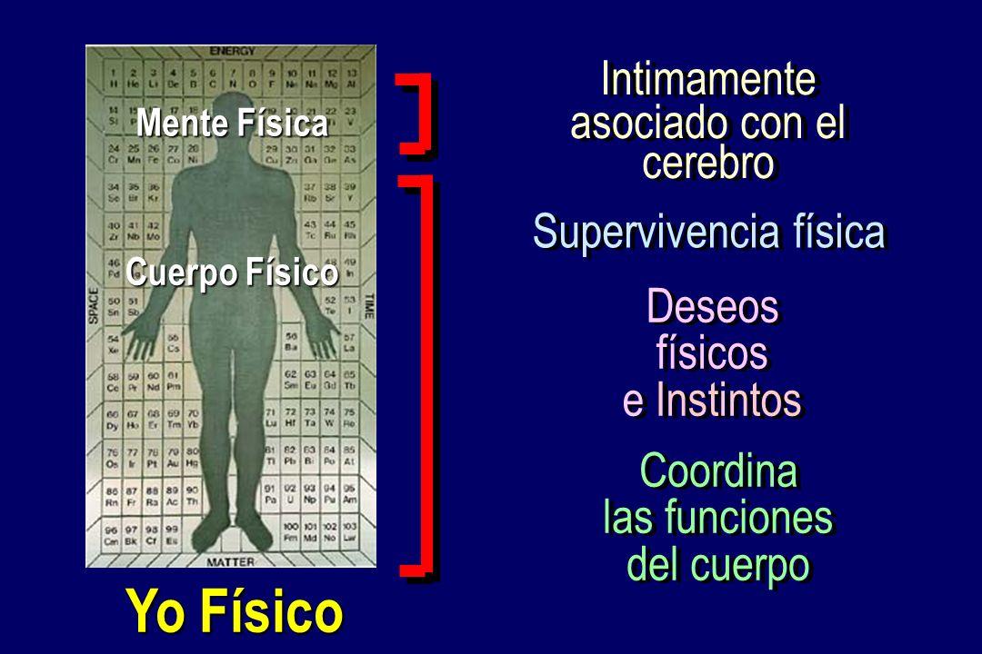 Yo Físico Deseos físicos e Instintos Deseos físicos e Instintos Coordina las funciones del cuerpo Coordina las funciones del cuerpo Cuerpo Físico Ment