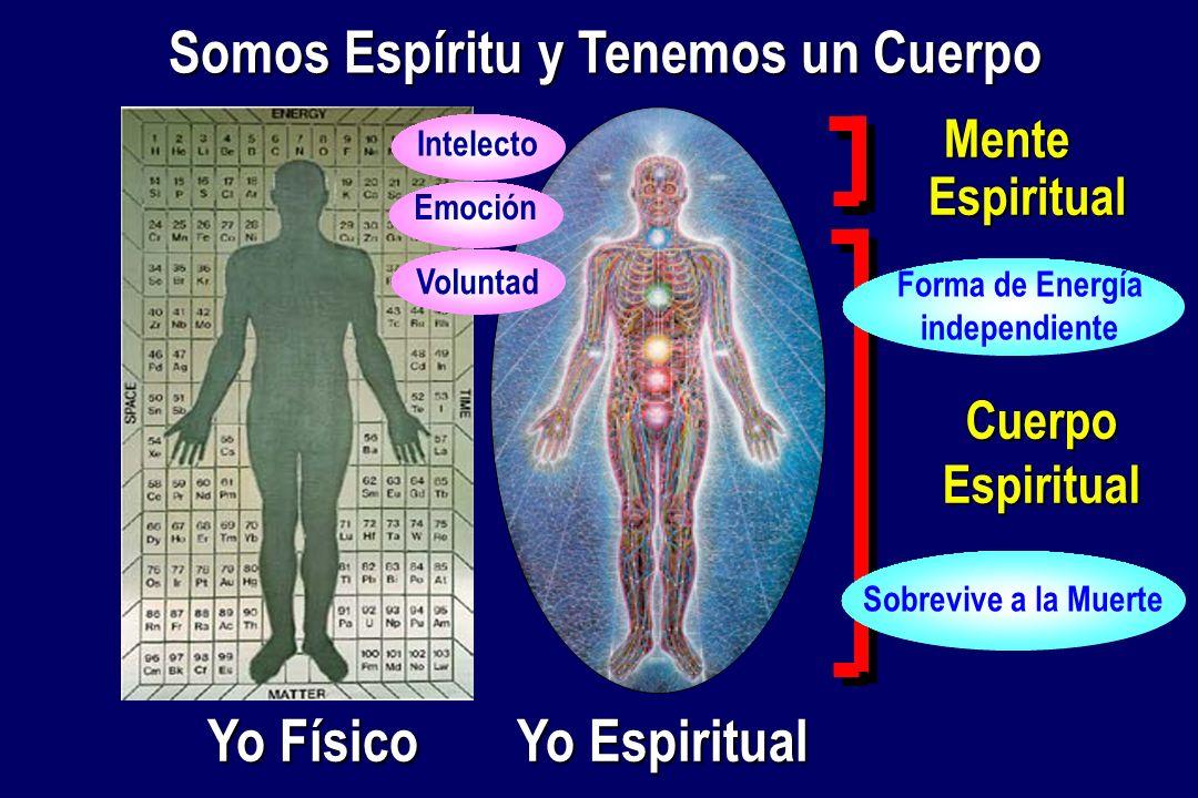 Mente Espiritual CuerpoEspiritual Yo Físico Yo Espiritual Somos Espíritu y Tenemos un Cuerpo Intelecto Voluntad Emoción Sobrevive a la Muerte Forma de