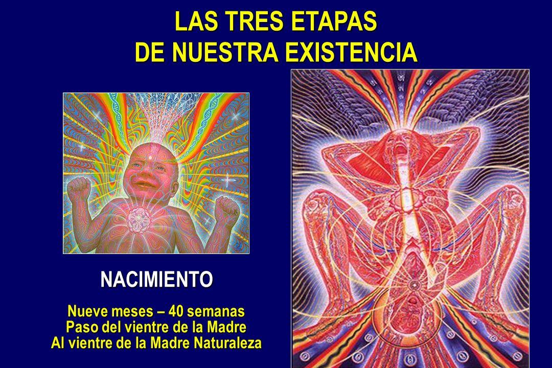 LAS TRES ETAPAS DE NUESTRA EXISTENCIA NACIMIENTO Nueve meses – 40 semanas Paso del vientre de la Madre Al vientre de la Madre Naturaleza