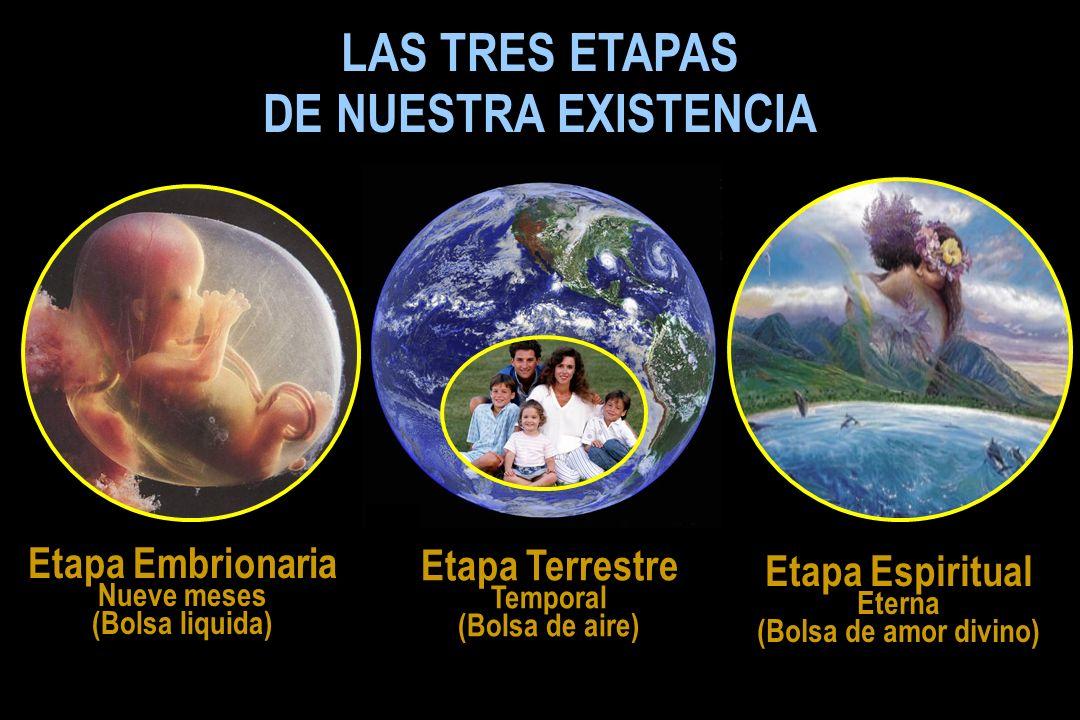 LAS TRES ETAPAS DE NUESTRA EXISTENCIA Etapa Embrionaria Nueve meses (Bolsa liquida) Etapa Terrestre Temporal (Bolsa de aire) Etapa Espiritual Eterna (Bolsa de amor divino)