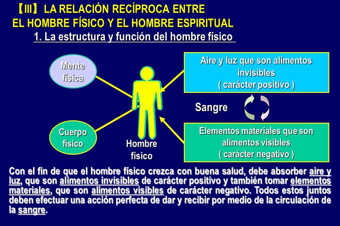 Cuerpofísico Mentefísica Sangre Hombre físico Aire y luz que son alimentos invisibles ( carácter positivo ) Elementos materiales que son alimentos vis