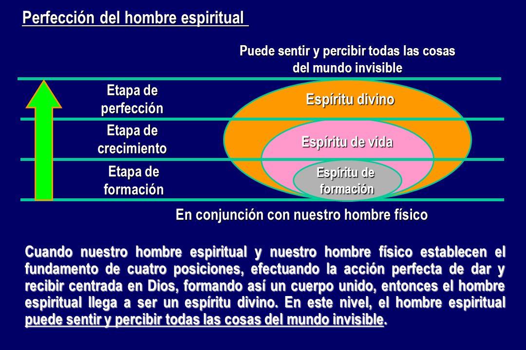 Perfección del hombre espiritual Etapa de formación Etapa de crecimiento Etapa de perfección Espíritu de vida Espíritu de formación Espíritu divino En