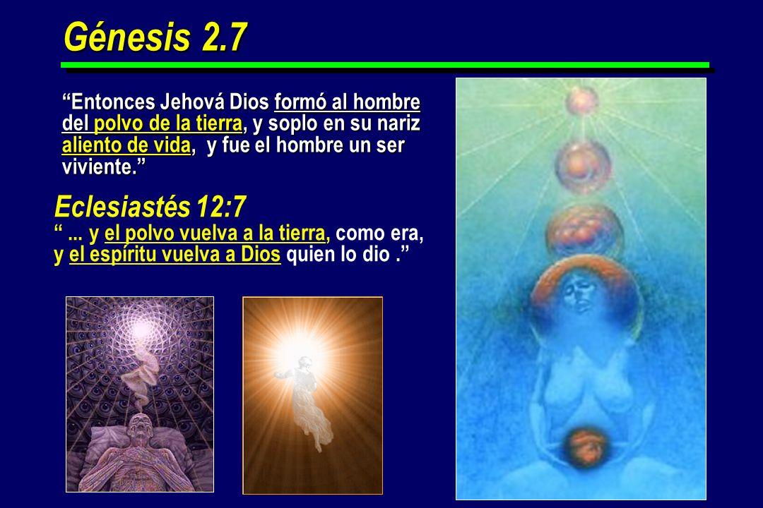 Génesis 2.7 Entonces Jehová Dios formó al hombre del polvo de la tierra, y soplo en su nariz aliento de vida, y fue el hombre un ser viviente. Eclesia