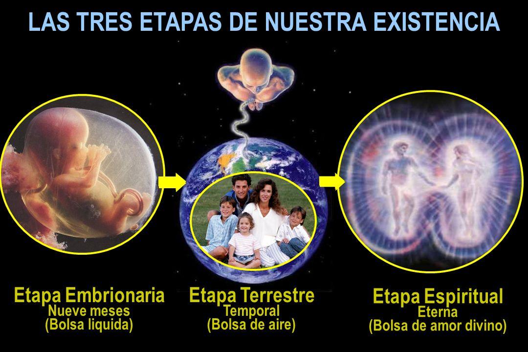 Etapa Espiritual Eterna (Bolsa de amor divino) LAS TRES ETAPAS DE NUESTRA EXISTENCIA Etapa Terrestre Temporal (Bolsa de aire) Etapa Embrionaria Nueve meses (Bolsa liquida)