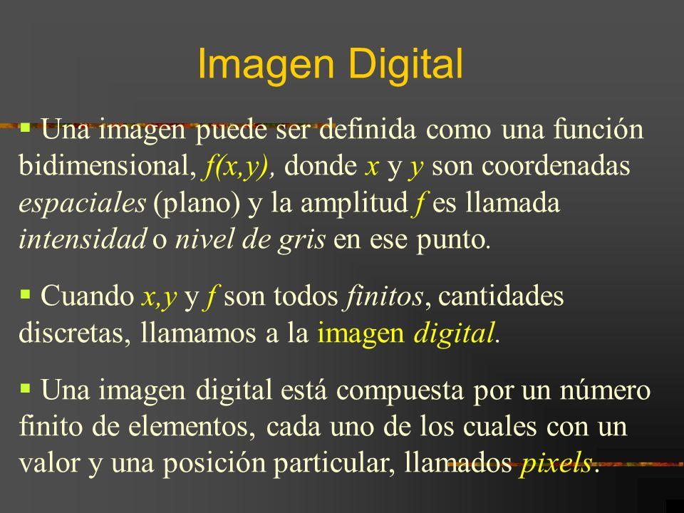 Una imagen puede ser definida como una función bidimensional, f(x,y), donde x y y son coordenadas espaciales (plano) y la amplitud f es llamada intens